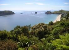 Strand Neuseeland