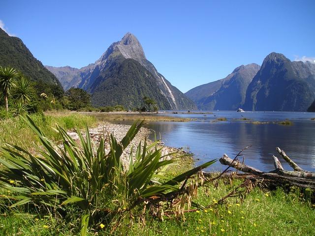 Erfahrungsbericht Work and Travel Neuseeland: Ein Jahr Working Holiday in Neuseeland