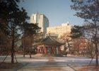 Begegnung mit einem Fremden in Seoul