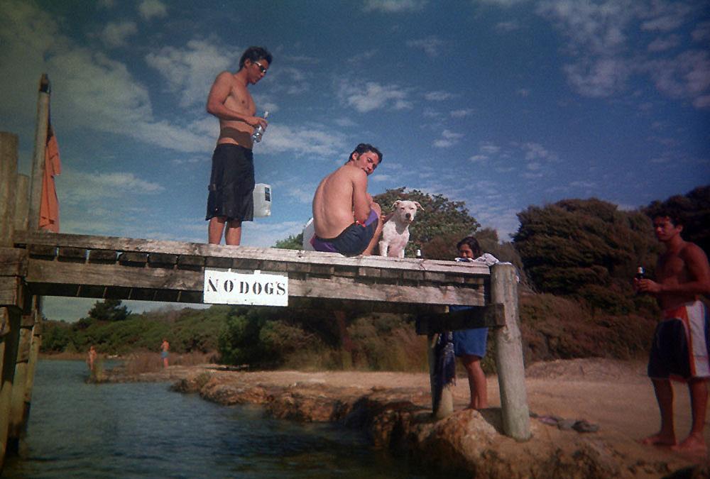 Keine Hunde am See erlaubt