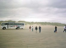 Bustour zum Ninety Mile Beach