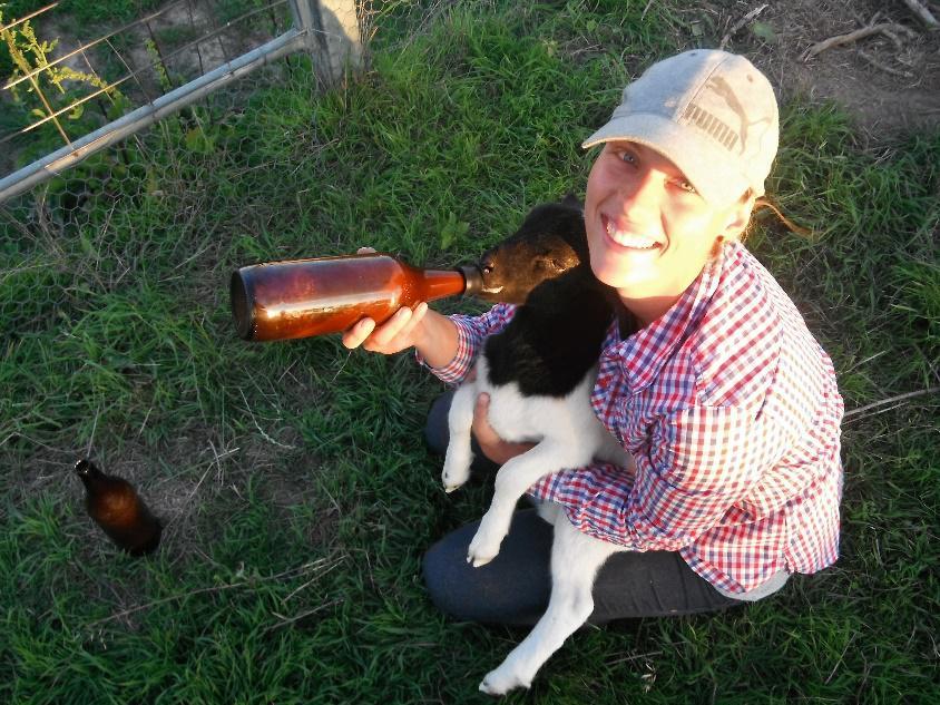 Arbeiten auf einer Farm in Australien