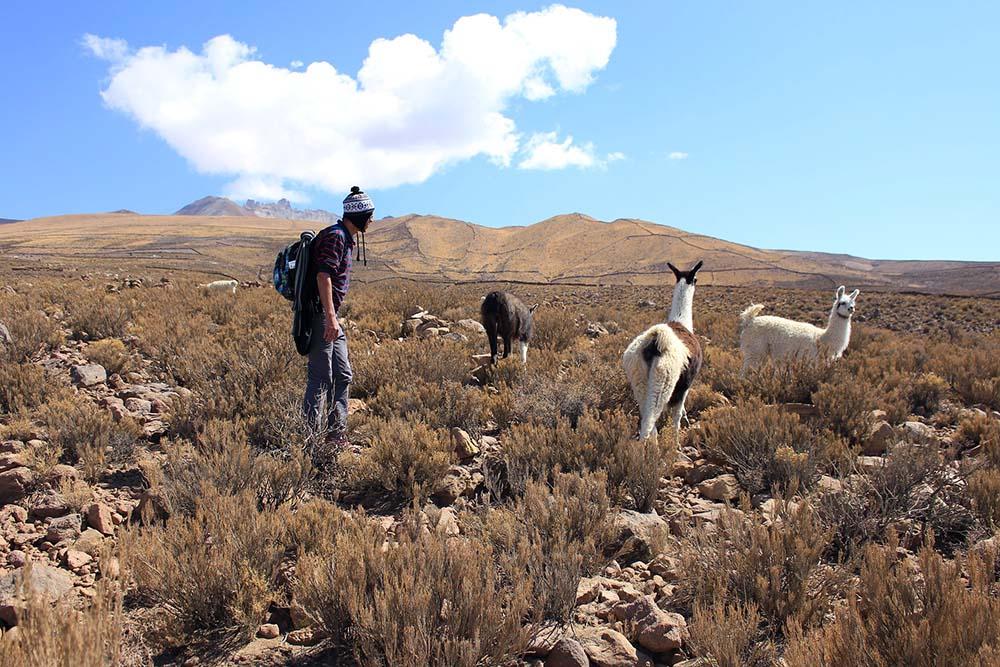 Online Spanisch lernen für Work and Travel in Südamerika